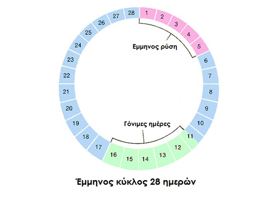 έμμηνος κύκλος